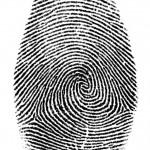 fingerprint2